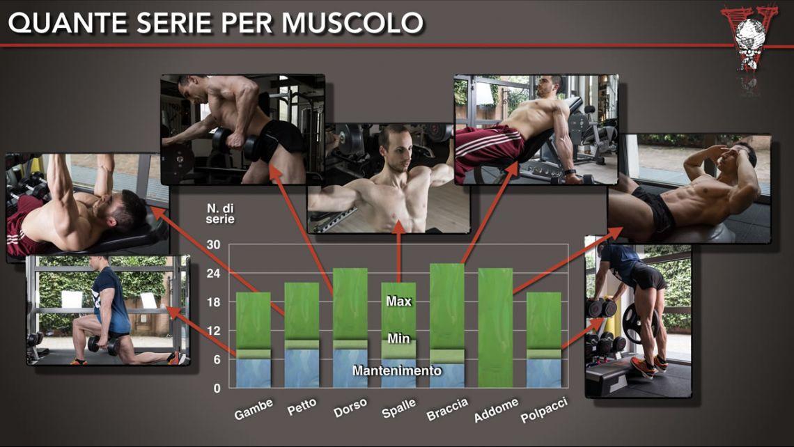 quante-serie-per-gruppo-muscolare-1140x642